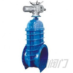 Oversized resilient seated gate valve