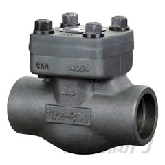 Piston Check Valve(Lift Check Valve)